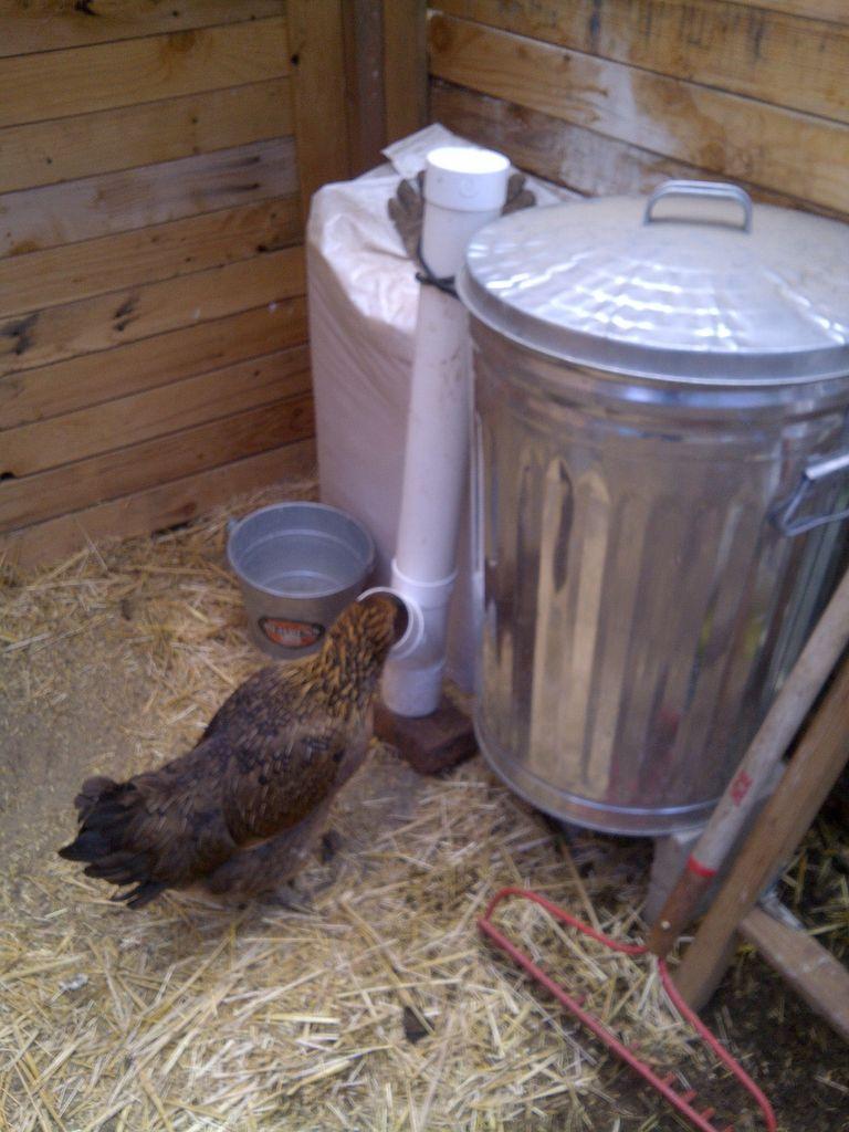 آموزش ساخت دانخوری مرغ با کمترین هزینه Diy Pvc Chicken