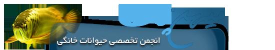 میهن پت • انجمن حمایت از حقوق حیوانات بی سرپرست ایران